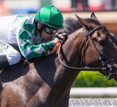 Sircat Sally Remains Unbeaten, Wins G2 Honeymoon Stakes