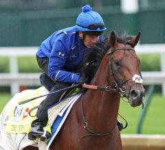 Thunder Snow Needs Special Display to Triumph at Royal Ascot