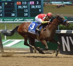 Cotillion Stakes Preview: Abel Tasman Goes for Four in a Row