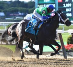 By the Moon Rolls Down the Stretch to Win G3 Bed O' Roses