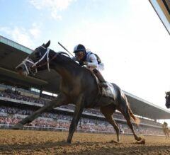 Tapwrit Cruises Past Favored Irish War Cry to Win G1 Belmont Stakes