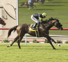 Bowies Hero Wins Opening Day Oceanside Stakes at Del Mar