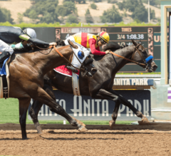 Baffert's Danzing Candy Holds off Ransom the Moon in G2 San Carlos Stakes
