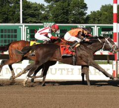 Racing Dudes Three Stars of the Week: Girvin Stakes Claim in Haskell Stakes