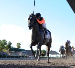 Imperial Hint Dominating in G3 Smile Sprint, Earns Trip to Breeders' Cup