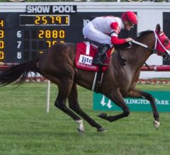 Keystoneforvictory Runs Down The Pizza Man in G3 Stars and Stripes