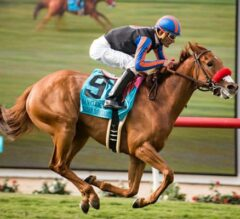 Madam Dancealot Shocks G2 San Clemente Handicap