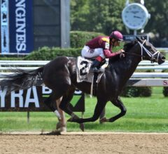 Coal Front Conquers G2 Amsterdam