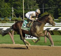 Travers Stakes Preview: 3-Year-Old Puzzle Continues with Saratoga Showdown