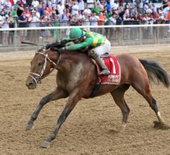 """Jockey Club Gold Cup Preview: Final """"Win And You're In"""" for the Classic"""