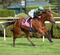 Proctor's Ledge Upsets in G3 Lake George Stakes