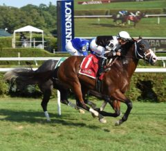 Blind Ambition Returns to Turf, Winner's Circle in $100,000 Quick Call
