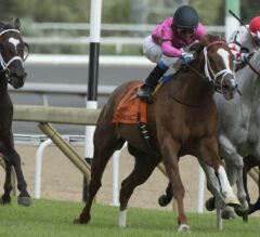 Conquest Panthera Powers Late, Takes G2 Play the King