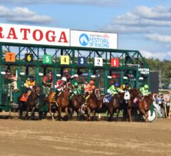 Betting on Horse Racing – Facts You Should Know About Straight Bets