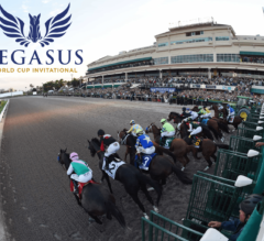 Racing Dudes 2020 Pegasus World Cup Wagering Guide and Picks Released