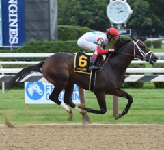Rally Cry Races Home First in $100,000 Alydar