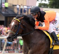 Imperial Hint Trounces Field in $100,000 Donald LeVine Memorial