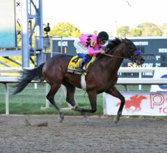 West Coast Wires Field with Ease in G1 Pennsylvania Derby