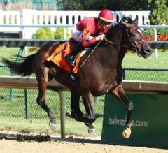 Honorable Duty Crushes G3 Lukas Classic