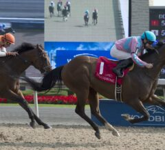 Ikerrin Road Claims Victory in G3 Bold Venture