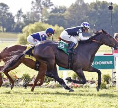 Racing Dudes Three Stars of the Week: Kentucky Downs Takes Center Stage