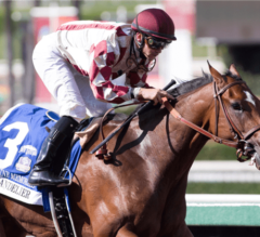 Moonshine Memories Remains Perfect In G1 Chandelier