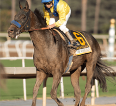 Mubtaahij An American Victor After G1 Awesome Again