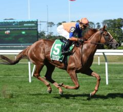 Winner's Circle Off Limits to Competition in G3 Noble Damsel
