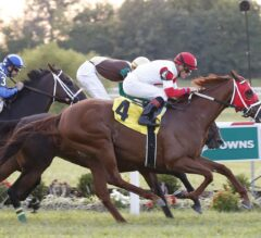 Kentucky Turf Cup Preview: Oscar Nominated Back to Defend Title