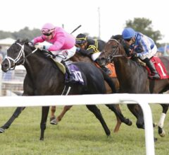 Hogy Shows He Still Has It in G3 Turf Sprint