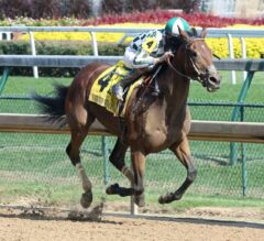 Romatic Vision Sees Lovely Rail Trip Home In G3 Locust Grove