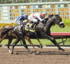 Los Alamitos Summer Stakes Schedule Released