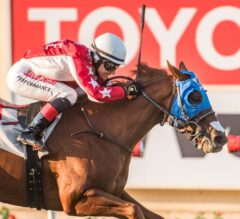 Terra's Angel Wins Emotional $100,000 Del Mar Juvenile Fillies Turf