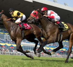 Untamed Domain Necks Out the Win in G2 Summer