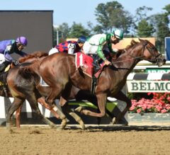 Highway Star Nips Carina Mia At The Wire In G2 Gallant Bloom