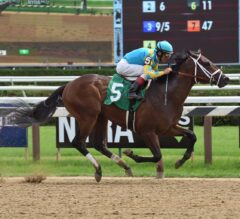 Hopeful Stakes Preview: Mojovation Looks To Be Zayat Stables' Next Star