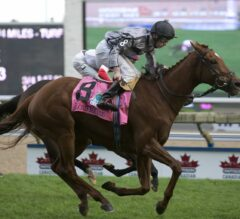 Blond Me Finds Canadian Success In G1 E. P. Taylor