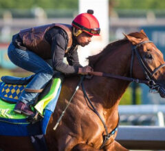 Get HYPED for Santa Anita Opening Day