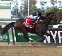 Diversify Wires Paceless G1 Jockey Club Gold Cup