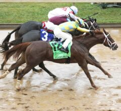 Flameaway Splashes Home By A Nose In G3 Dixiana Bourbon