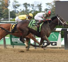 Firenze Fire Blazes To Front Late In G1 Champagne