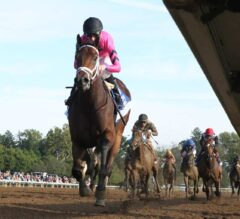 Heavenly Love Romps In G1 Alcibiades