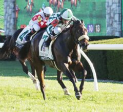Morticia Scares Away Competition In G3 Buffalo Trace Franklin County