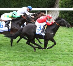 Suedois Invades G1 Shadwell Turf Mile Victory Lane