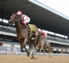 Separationofpowers Separates From Field In G1 Frizette