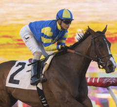 Analyze It Sets Record In G3 Cecil B. DeMille