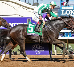Bar of Gold Springs Major Upset in Filly & Mare Sprint