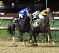 Holy Bull Preview: Enticed vs. Tiz Mischief Set for a Rematch