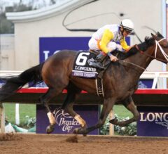 Racing Dudes Divisional Rankings 11/8/17: The Breeders' Cup Fallout