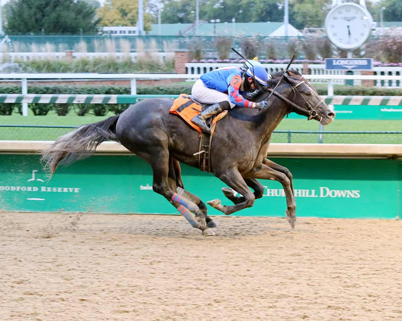 Kentucky Jockey Club Preview: Kentucky 2-Year-Olds Look to Prove ...